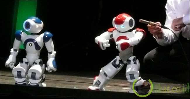 Robot Tai-Chi