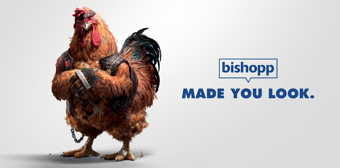 4400 Gambar Binatang Ayam Png HD Terbaru