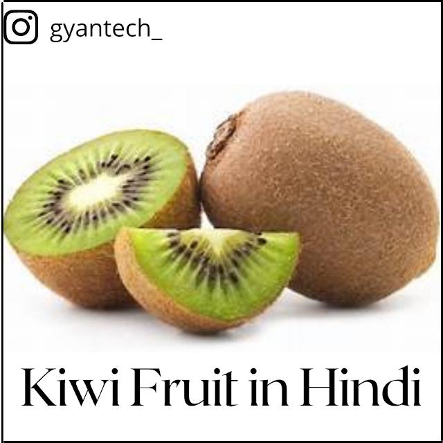 Kiwi Fruit in Hindi । Kiwi Fal क्या है?