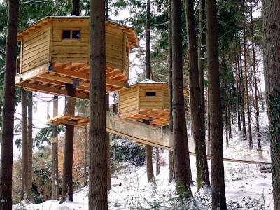http://bensnaturalbuilding.blogspot.com/2013/02/building-ecological-treehouse-hotel.html