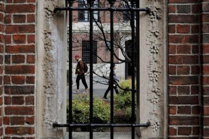 AS untuk menarik visa bagi siswa asing jika kelas sepenuhnya online