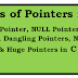 Learn Various Types of pointers in C