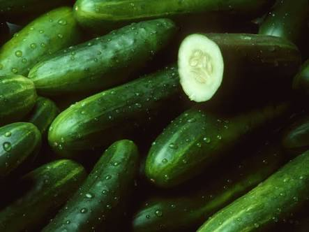 10 healthy benefits of Cucumber, No. 2, 7 and 9 will really surprise you