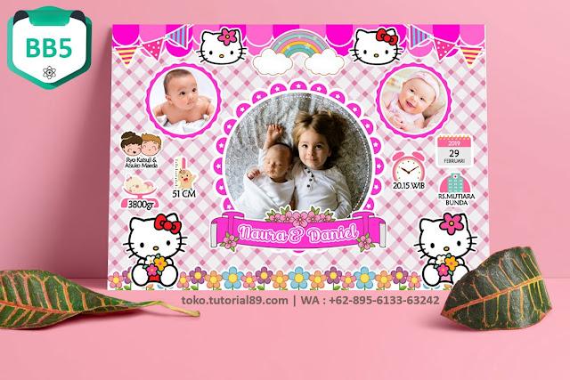 Biodata Bayi Costume Baby Girl Kode BB5 (hello kiti)