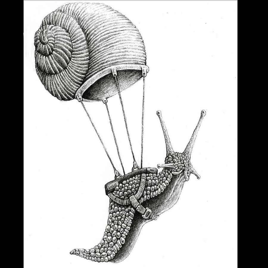 09-Para-snail-Tim-Andraka-www-designstack-co