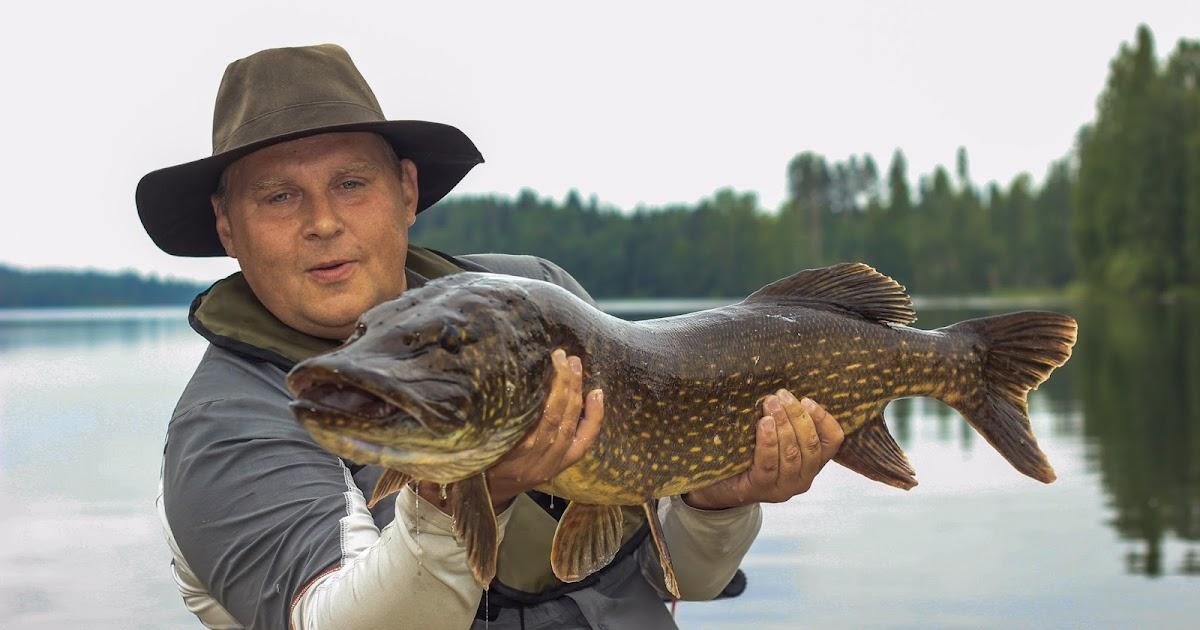 Рыбалка в Финляндии — озера, цены, туры