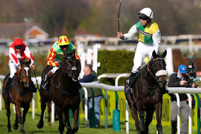 Many Clouds - Grand National Winner