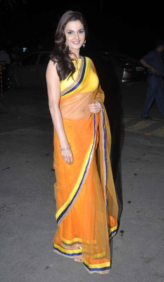 Bollywood Actress Monica Bedi 2017 In Transparent Yellow Saree