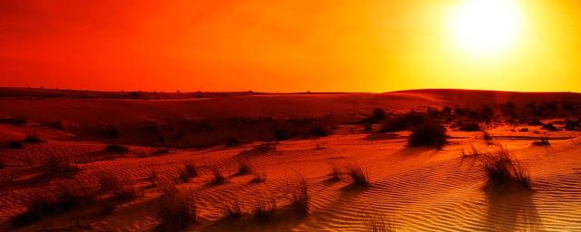 Mặt Trời mọc trên hoang mạc. Credit : Anna Omelchenko/Alamy Stock Photo.