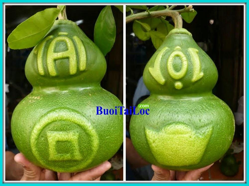 buoi-Ho-Lo-Tai-Loc-Thoi-Vang-Dong-Tien-lam-qua-tet-y-nghia