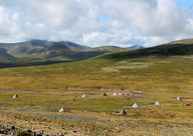 Scientist explores archaeological record by studying Mongolian reindeer herder camps