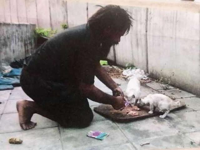 Бездомный мужчина, недоедая сам, ежедневно подкармливает голодных кошек