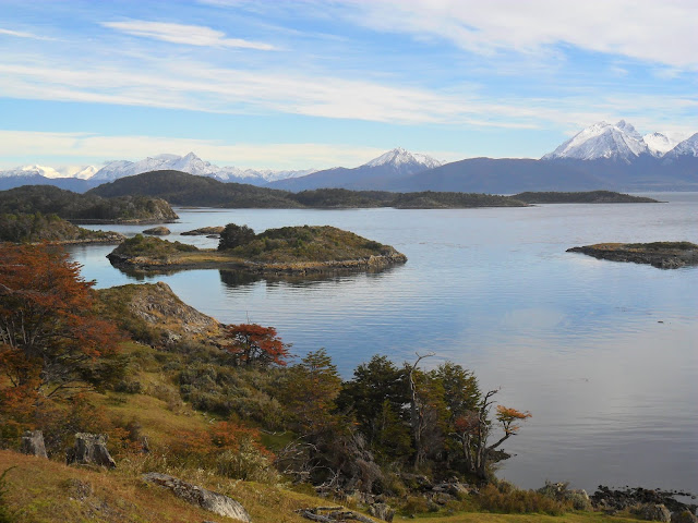 Visitar PUERTO WILLIAMS na Isla Navarino - O Mundo do Fim do Mundo | Chile