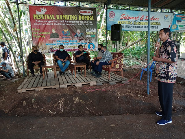 """Festival Kambing Domba Di Pasar """"CIPLUKAN"""""""