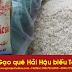 Gạo tám xoan Hải Hậu - Gạo đặc sản làm quà biếu Tết 2017