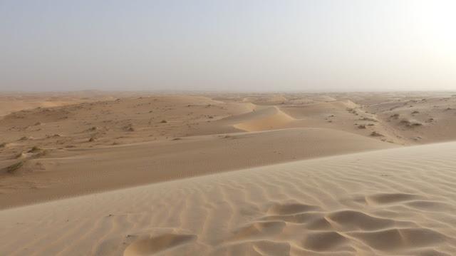 Fotoparade 2020 - Weite - Sahara in Mauretanien