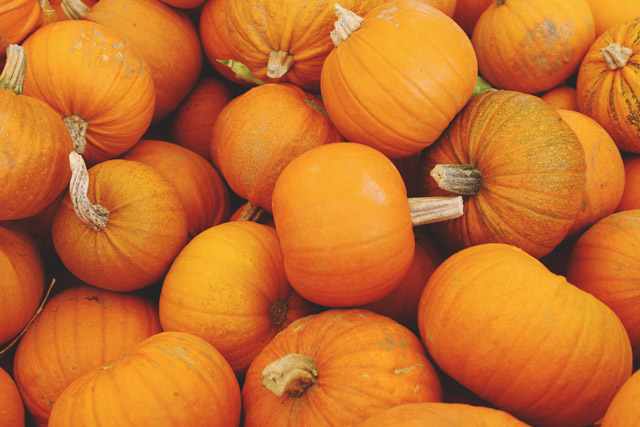 Bright Orange Pumpkins