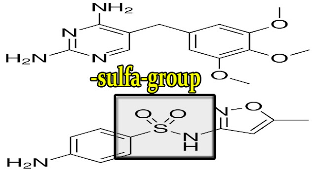 co-trimoxazole-structure-with-sulfa-group