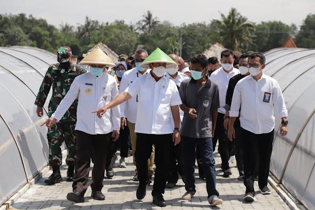 Produksi Meningkat,  Menteri KP Dorong Penjualan Garam Kebumen Lewat Online