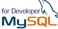 รับสอน จัดอบรม MySQL for Developer