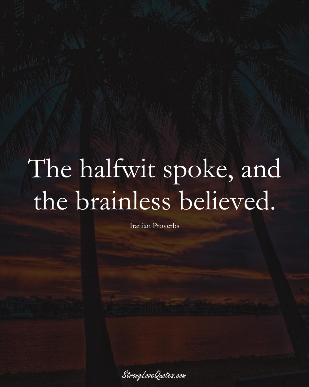 The halfwit spoke, and the brainless believed. (Iranian Sayings);  #MiddleEasternSayings
