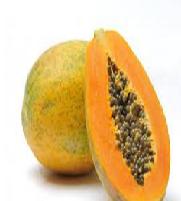 Papaya Fruit meaning in English, hindi, telugu,tamil,marathi,Gujrathi,Malayalam,Kannada