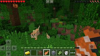 Minecraft Apk Pure