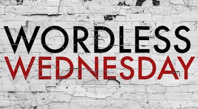 Wordless Wednesday Masih Ada Ke Dalam Dunia Blog?
