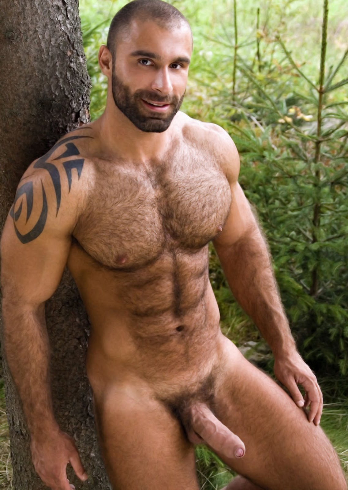 Handsome Male Naked