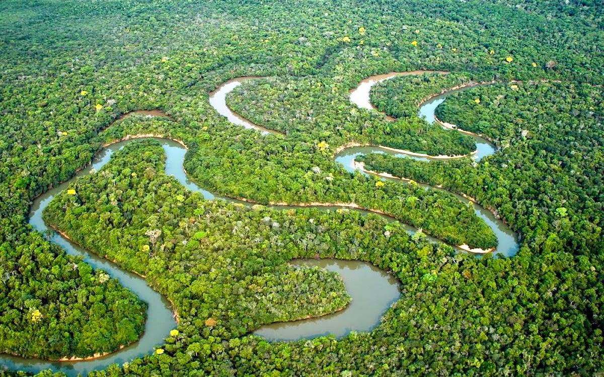 Resultado de imagem para imagens do rio amazonas