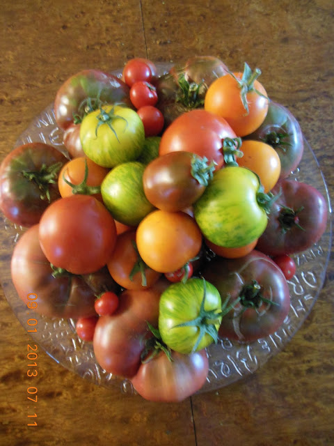 Tomatoes from the Garden Salad with Fresh Mozzarella.