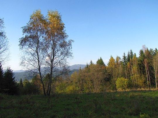 Na wprost widać wierzchołek Jaworzyny Krynickiej, z lewej pokazuje się wzniesienie Wielkiej Polany.