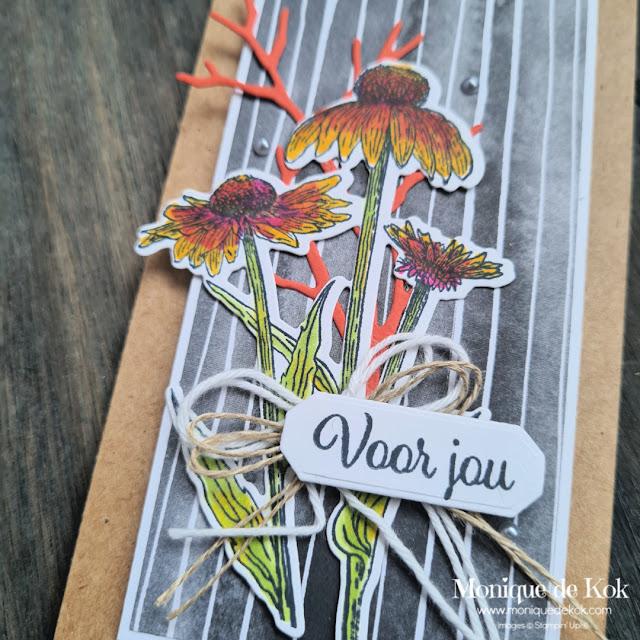 zelfgemaakte kaart, mini slimline, voor jou, nature's harvest, harvest meadow, stampin blends, inkleuren, zelfgemaakte kaart, stampin up, Stampin met Monique, bestellen, producten,