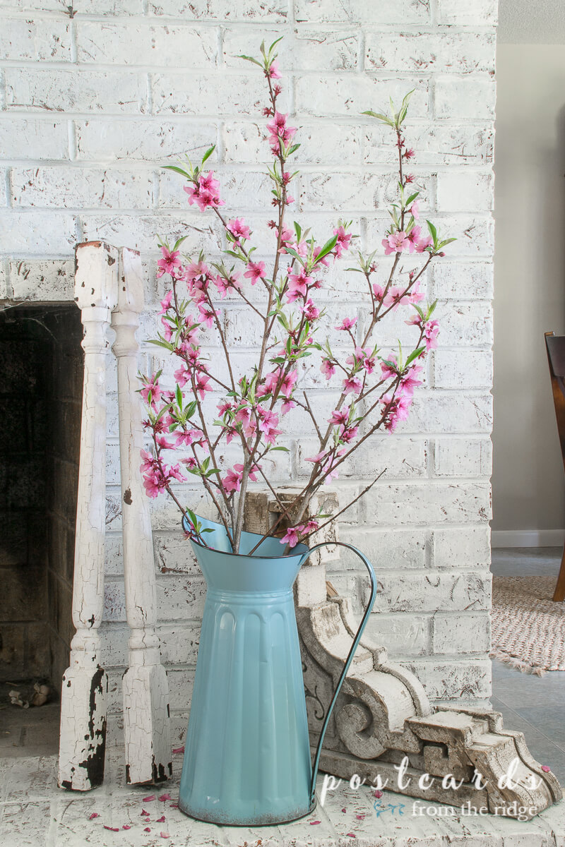 blue metal pitcher with redbud branches