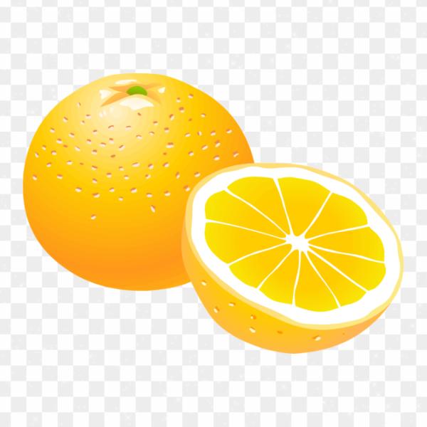 Ilustración naranja dividida png transparente