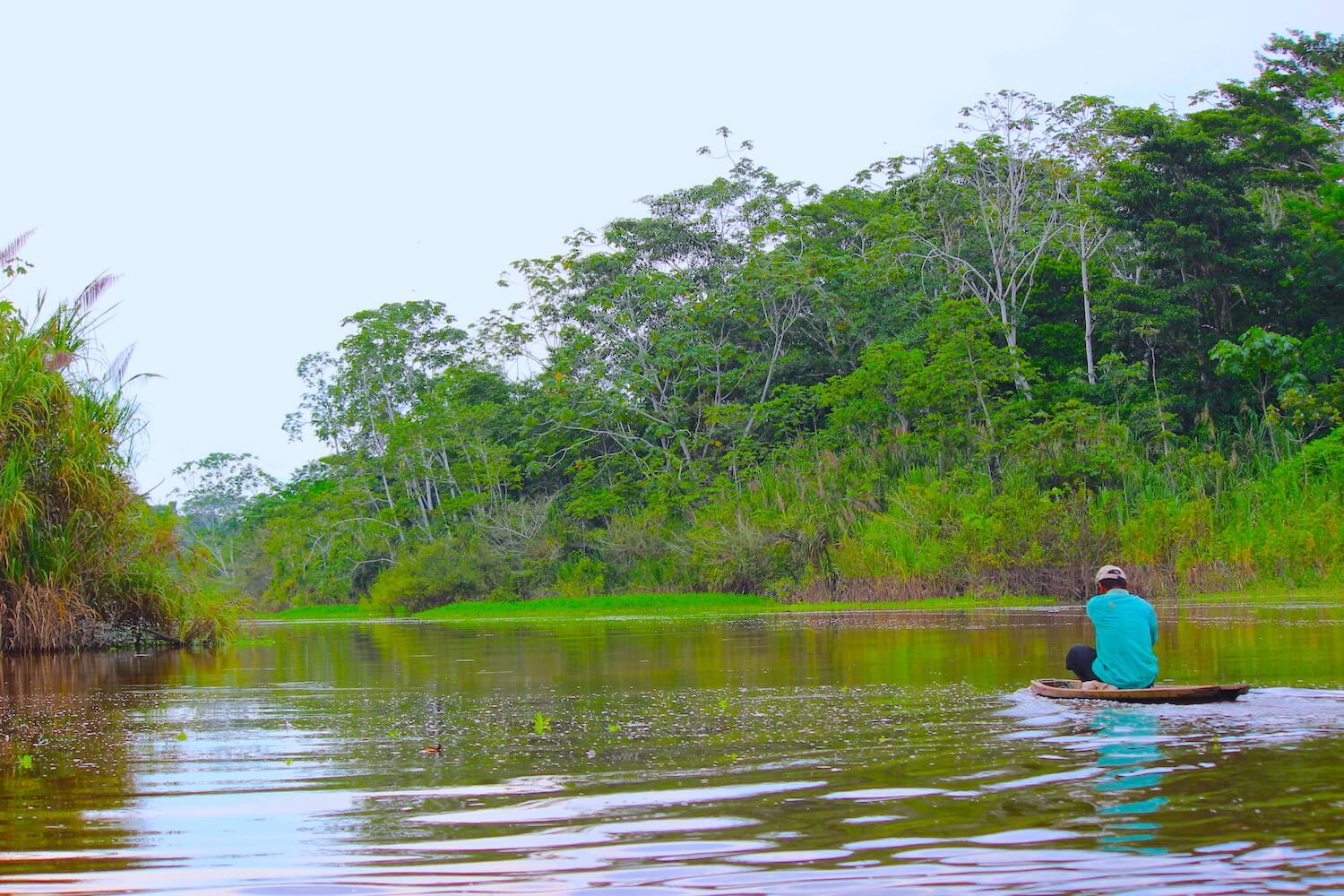 peruvian amazon river ucayali canoe