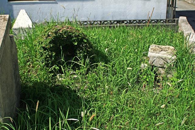 賓頭盧(ビジュン)の写真
