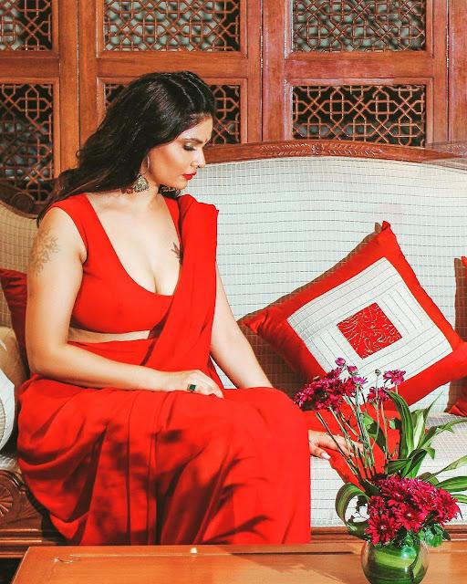 Aabha Paul hot sexy saree photos   Free download videos Navel Queens