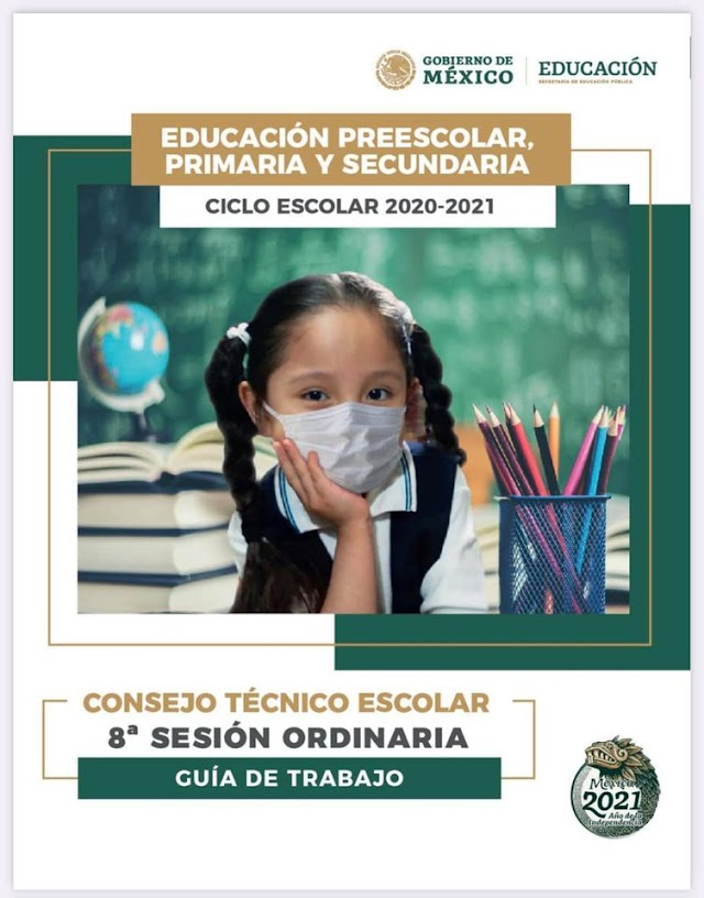Guía Octava Sesión Ordinaria CTE