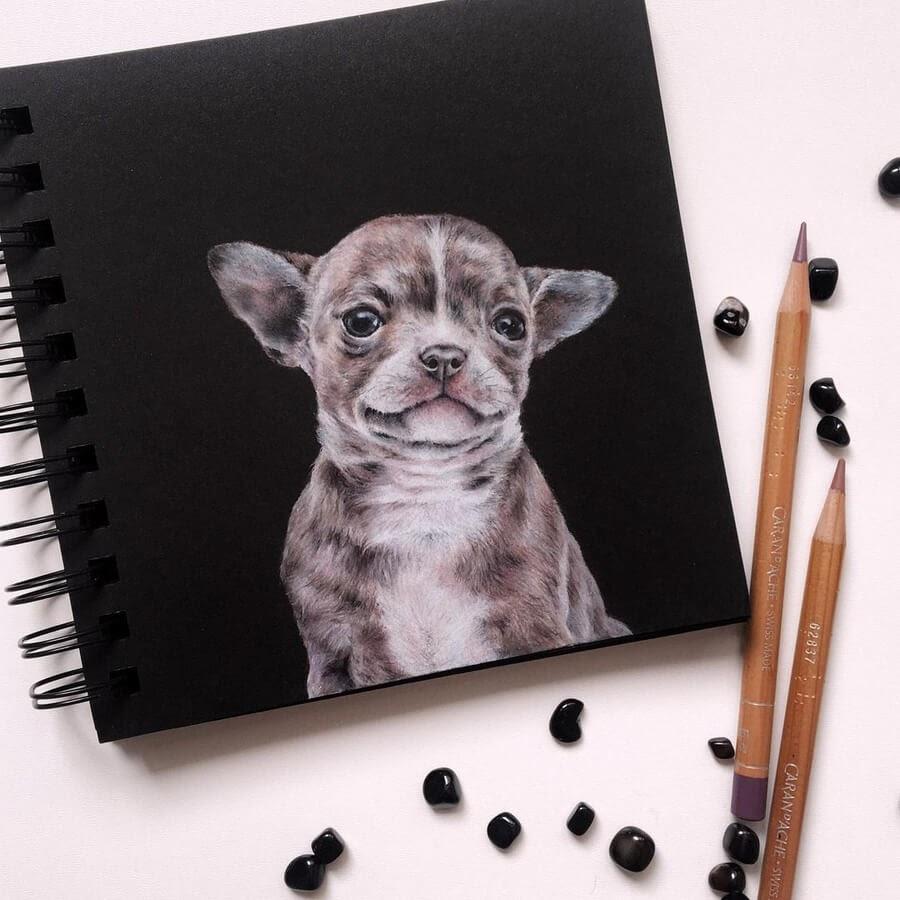 01-Smiling-puppy-Ruzanna-www-designstack-co