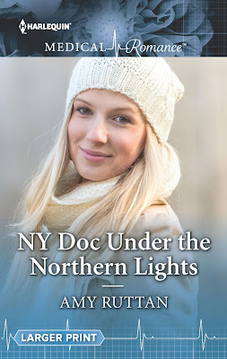 NY Doc Under the Northern Lights cover