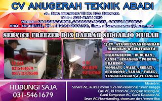 Service Freezer Box Daerah Sidoarjo Murah