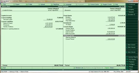 Tally Voucher Entry and Tally Reports with Example