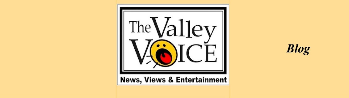 The Valley Voice