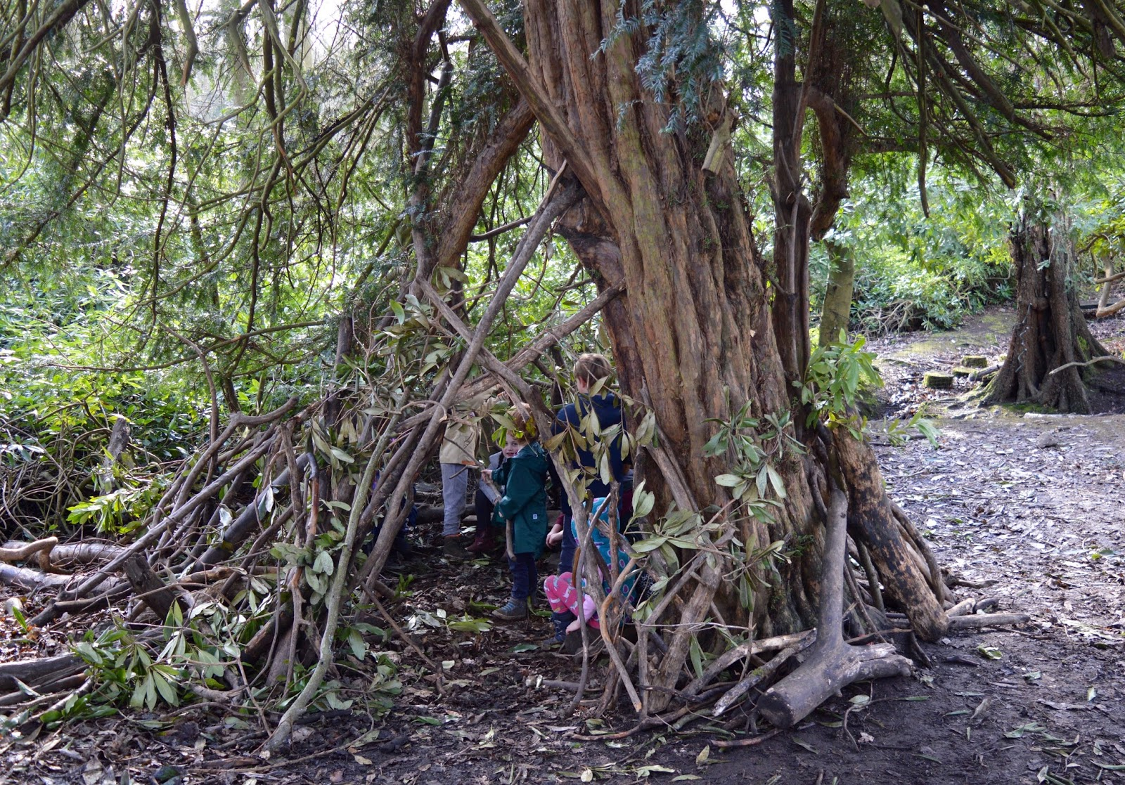 Beamish Wild   School Holiday Club & Activities in County Durham   North East England - woodland den