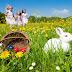 ¿Cuál es el origen de los huevos de Pascua y por qué hay un conejo?