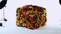 box-flowers-makoto-azuma