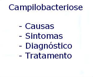 Campilobacteriose causas sintomas diagnóstico tratamento prevenção riscos complicações