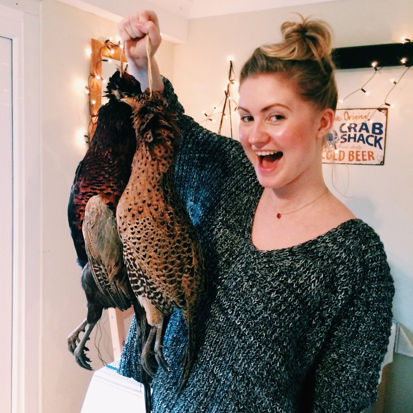 Dalry Rose blog, Hampshire pheasants, what makes a house a home