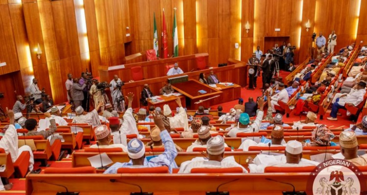 Rape: Nigeria Senate seeks death penalty for rapists